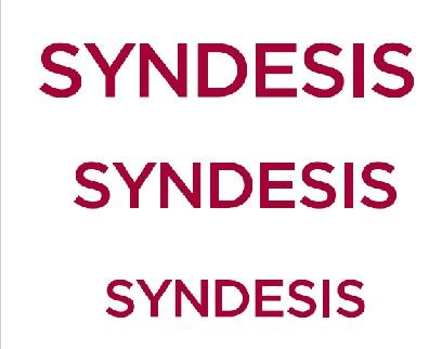 Syndesis Ltd